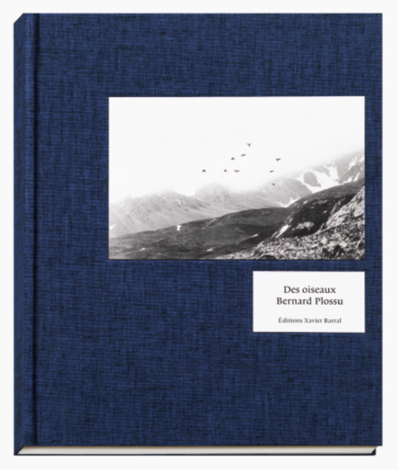 Bernard Plossu: Des Oiseaux